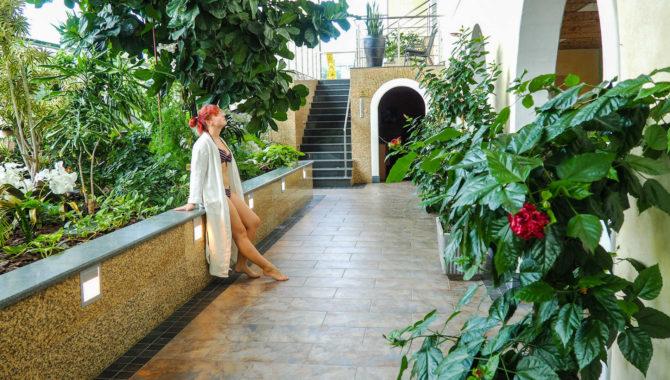 Toila SPA Hotell wellnesskeskus Orhidee talveaed.