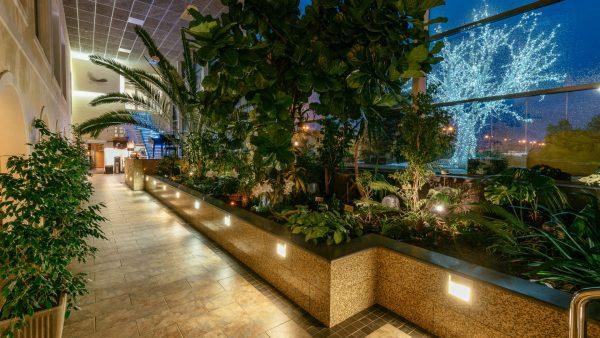 Toila SPA Hotell wellnesskeskus Orhidee talveaed